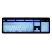 Клавиатура SmartBuy 301 Black/White USB с подсветкой клавиш (SBK-301U-KW)