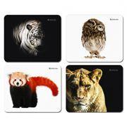 Коврик для мыши Defender Wild Animals, картинки в ассортименте, 220x180x2мм (50803)