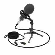 Микрофон RITMIX RDM-160 Black, конденсаторный, подставка